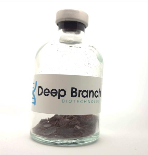 Deep Branch Protein